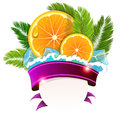 Orange slices and palm branches Royalty Free Stock Photo
