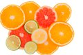 Orange slices of an symbolic photo for healthy vitamins with fresh fruit Stock Images