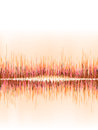 Orange sound wave on white background eps vector file Stock Photography