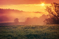Orange sunrise in countryside scenic view of morning misty spring scene Royalty Free Stock Photography