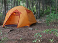 An orange tent sitting in algonquin provincial park in ontario canada Royalty Free Stock Images