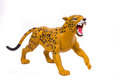 Orange tiger with big teeth Royalty Free Stock Photo