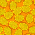 Orange. Vector seamless background with oranges Royalty Free Stock Photo