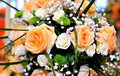 Orange Wedding roses Royalty Free Stock Photography