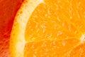 Orange On A White Background.W...