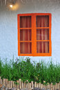 Orange window little green tree background Royalty Free Stock Photo