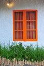 Orange window little green tree background Royalty Free Stock Photo