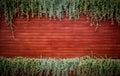 Orange woodden wall with foliage background Stock Image