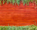 Orange woodden wall with foliage background Royalty Free Stock Image