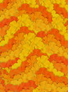 Orange and Yellow Stripy Flower Background Royalty Free Stock Image
