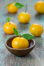 Oranges citrus japonica thunb in a ceramic dish Royalty Free Stock Photos