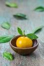 Oranges citrus japonica thunb in a ceramic dish Stock Photos