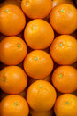 Oranges fresh background close up Royalty Free Stock Image