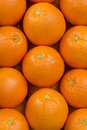 Oranges fresh background close up Stock Photos