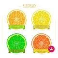 Oranges fruits with green leaves slices and juice isolated background realistic vector illustration fresh ripe Stock Image