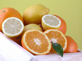 Oranges and lemons Royalty Free Stock Image