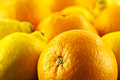 Oranges and lemons a closeup of whole Royalty Free Stock Photo