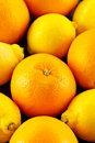 Oranges and lemons a closeup of whole Royalty Free Stock Photography
