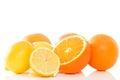 Oranges and lemons on white background Stock Photos