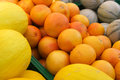 Oranges and melons Royalty Free Stock Photo