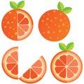 Oranges orange slice, half cut orange and front view of cut ripe orange. Set of vector illustration. Royalty Free Stock Photo