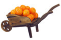 Oranges on pushcart isolated on white background Stock Images