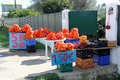 Oranges for sale orange and clementines on the roadside in the algarve portugal Stock Photography