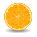 Oranges slice over white vector illustration Royalty Free Stock Photo