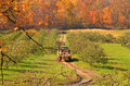 Hayride on pickup truck in autumn apple orchard Royalty Free Stock Photo