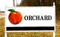 Orchard sign with peach on it a local along the highway directs travels to s store Royalty Free Stock Photography