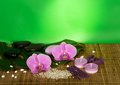 Orchid flowers set for spa on bamboo cloth a green background Stock Photography