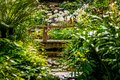Orchid Garden Imitation rain forest
