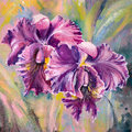Orchid purple in garden picture created with watercolors Stock Images