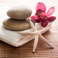 Orchid sea star stones spa Royalty Free Stock Photos