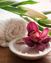 Orchid symbol femininity inner beauty Stock Photo