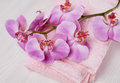Orchid and towel Royalty Free Stock Photo