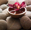 Orchid water ayurveda ambiance Royalty Free Stock Images