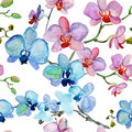 Orchids flowers watercolor illustration seamless pattern of Royalty Free Stock Photos