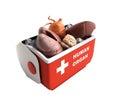 Organ transportation concept open human organ refrigerator box r