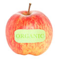 Organic Apple Stock Photography
