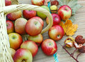 Organic apples fresh in a wicker basket Royalty Free Stock Photos