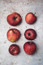 Organic apples group of on metal surface Stock Images