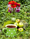 Organic apples and tea summer cup of flowers in the garden Royalty Free Stock Photos