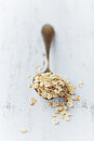 Organic Barley Flakes on a Spoon Stock Photos