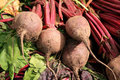 Organic Beetroot Stock Photo