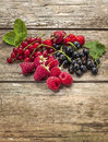 Organic berry fruit variety Royalty Free Stock Photo