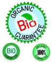 Organic& bio colorful label set Stock Images