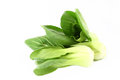 Organic boc choy on white background Royalty Free Stock Photos