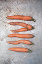 Organic carrots on metal surface Royalty Free Stock Photos