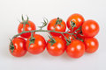 Organic cherry tomatoes bunch of Stock Images